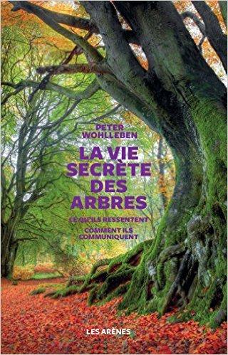 vie-secrete-des-arbres-couverture.jpg
