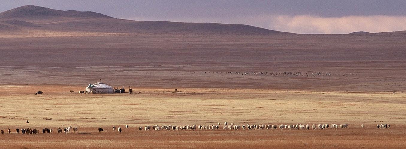 steppe-asie-centrale.jpg